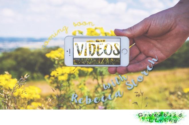 Videos Rebecca Storch Greenbird Living